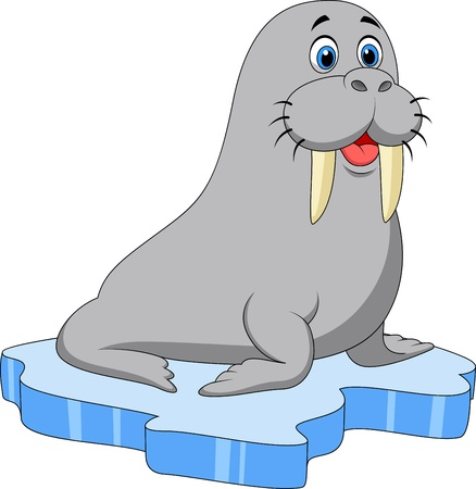 amused: Cute walrus cartoon on ice Illustration