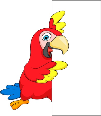 Macaw bird cartoon with blank sign