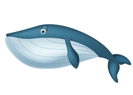 cetacean: Cute whale cartoon