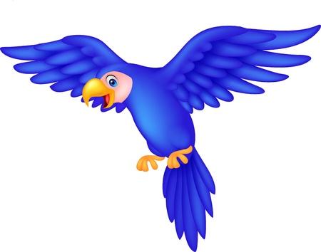 amerika papağanı: U