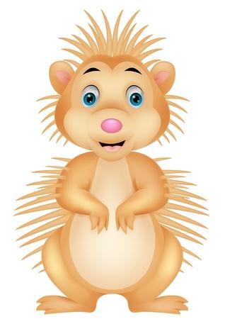 porcupine: Cute porcupine cartoon