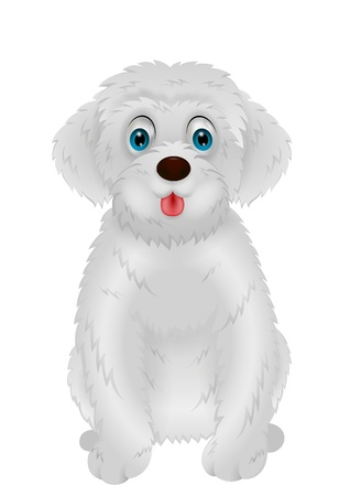 Cute white dog cartoon Vector