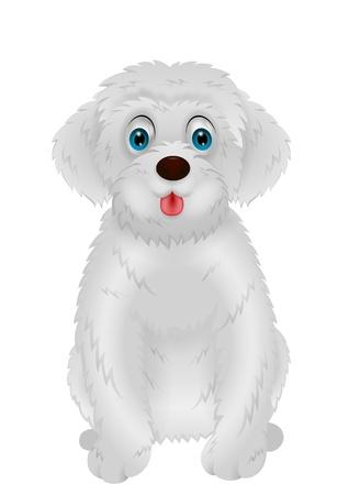 shaggy dog: Cute white dog cartoon
