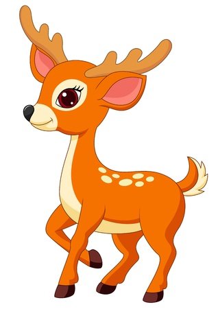 white tail deer: Cute deer cartoon Illustration