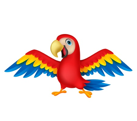 Cute parrot bird cartoon Vector
