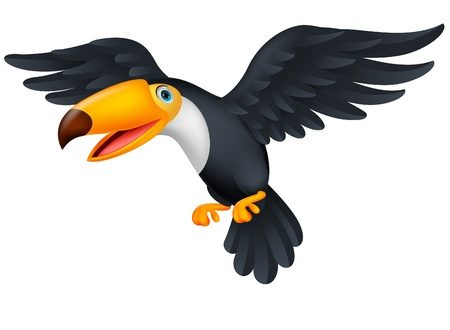 Toucan bird cartoon flying Vector