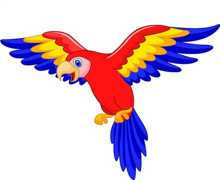 Cute parrot bird cartoon