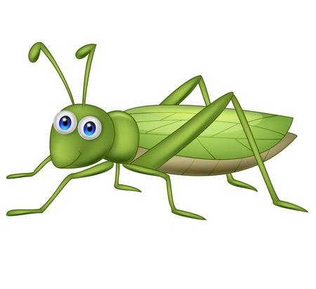 szarańcza: Cartoon Grasshoppher