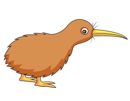 pajaro dibujo: Dibujo animado del p�jaro Kiwi Vectores