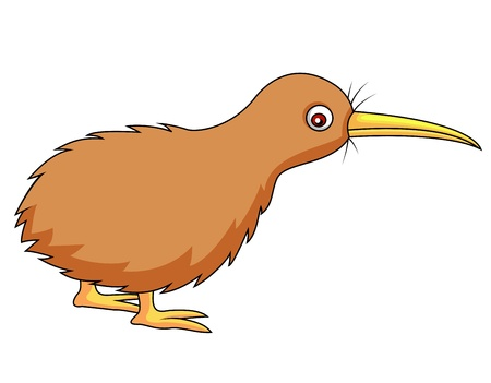 cartoon bird: Kiwi bird cartoon Illustration