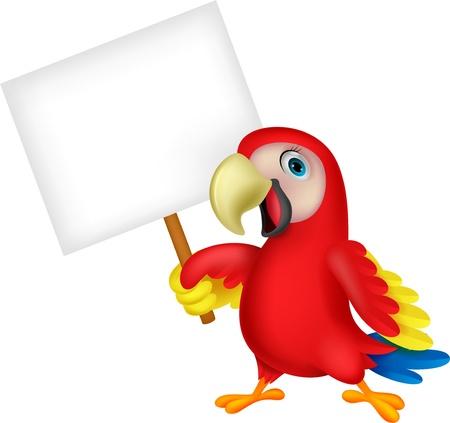 amerika papağanı: Boş işareti ile papağan kuş karikatür