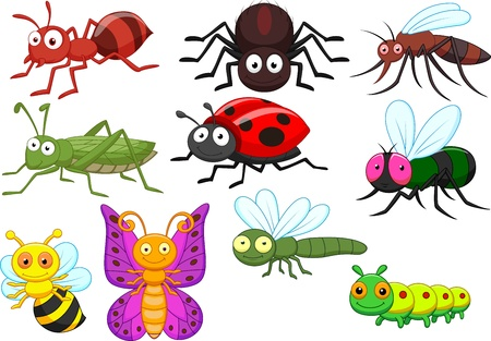 Insect cartoon collection set Vector