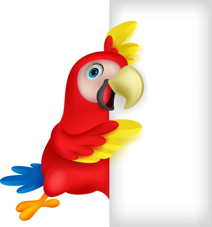 macaw: Macaw bird cartoon with blank sign