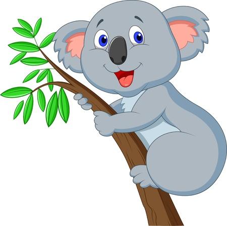 koala: Lindo koala de dibujos animados