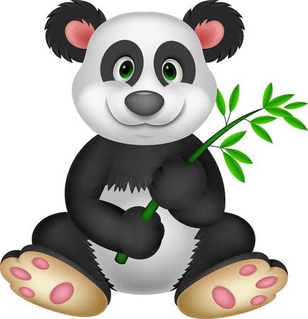 endangered species: Giant Panda eating bamboo