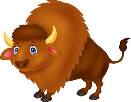 herbivorous animals: Bison cartoon  Illustration