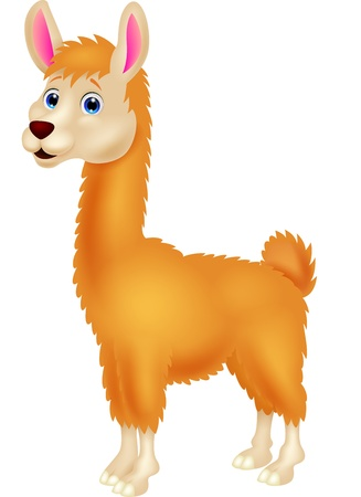 Ilama cartoon Vector