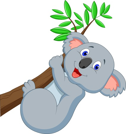 Cute koala cartoon  Vector