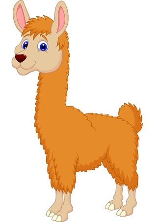Ilama cartoon Standard-Bild - 20754015