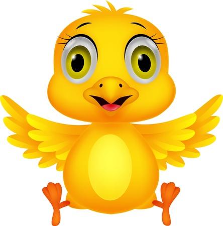 baby chicken: Cute baby chicken cartoon