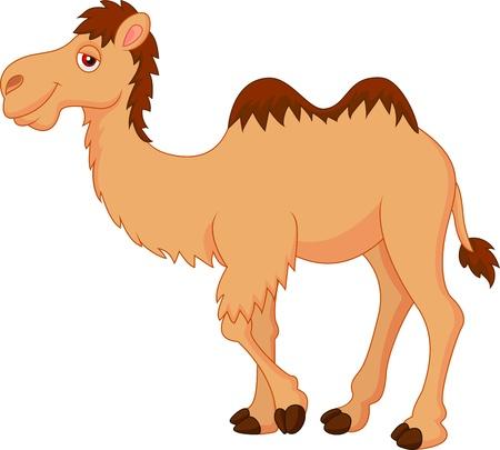 camello: Cute dibujos animados de camellos