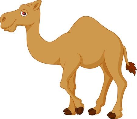 Nette Karikatur Kamel