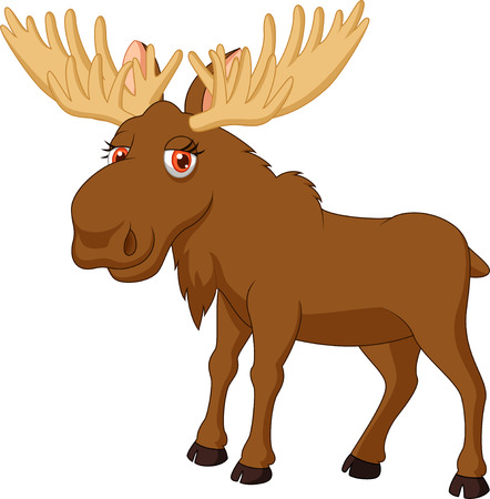 moose antlers: Cute moose cartoon