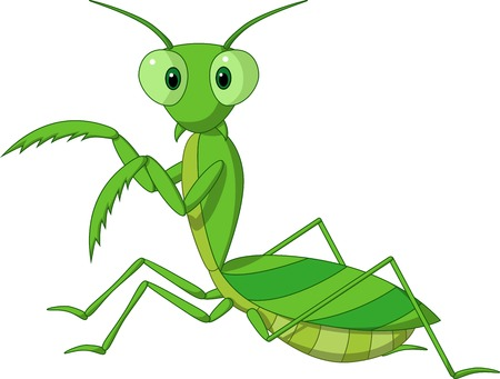 Cute praying mantis cartoon  向量圖像