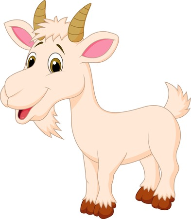 domestic goat: Goat cartoon character  Illustration