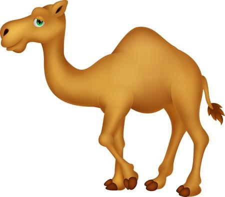 camel: Cute camel cartoon character