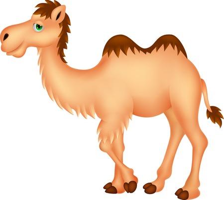 animales del desierto: Dibujos animados lindo camello Vectores