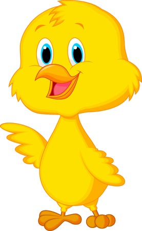 baby chick: Cute baby chicken cartoon