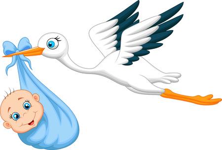 cicogna: Cartoon Cicogna con il bambino Vettoriali