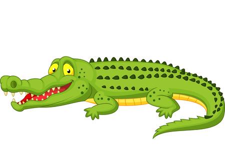 krokodil: Crocodile cartoon Illustration