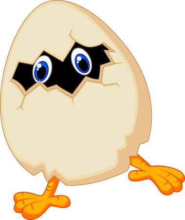 Cartoon Little chicken in egg  Vector