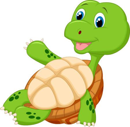 tortoise: Cute tortoise cartoon relaxing