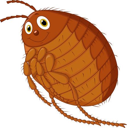 flea: Flea cartoon  Illustration