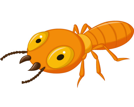Termite cartoon  Vector