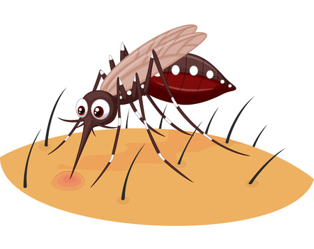 mosquito: Mosquito cartoon sucking blood from human skin