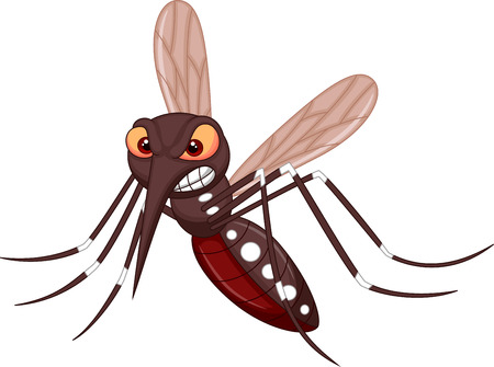 cartoon bug: Angry mosquito cartoon
