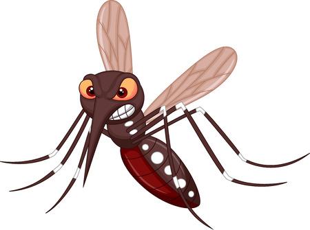 mosca caricatura: Dibujos animados Angry mosquito