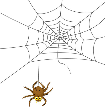 Spider web cartoon  Vector
