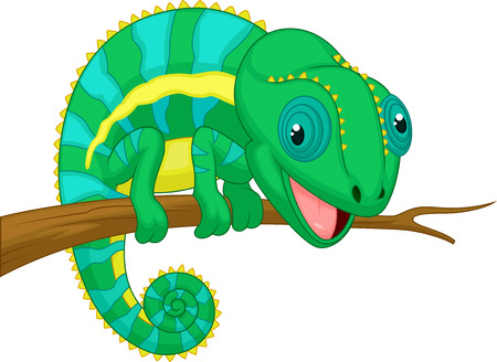 Cute chameleon cartoon  Vector