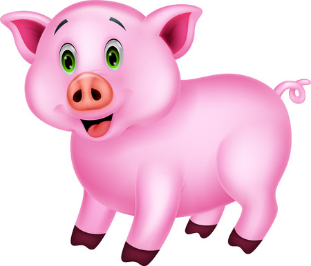 young animal: Cute pig cartoon