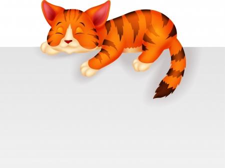gato caricatura: Durmiente lindo gato de dibujos animados Vectores