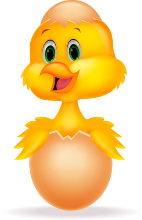 eggs: Cracked egg with cute bird cartoon inside  Illustration
