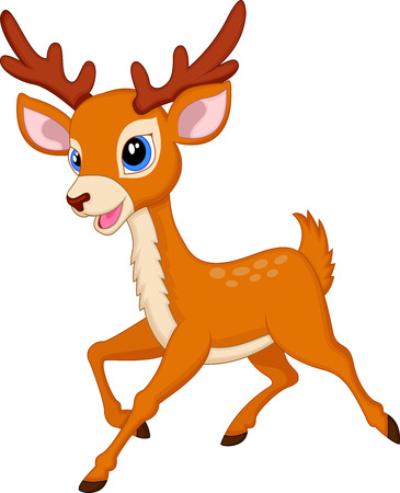 white tail deer: Cute deer cartoon