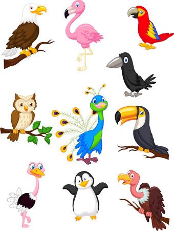 veréb: Bird karikatúra gyűjtemény Illusztráció