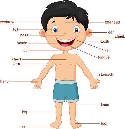 preescolar: Cartoon Vocabulario parte del cuerpo