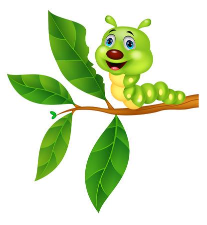 かわいい毛虫の漫画の葉を食べる  イラスト・ベクター素材
